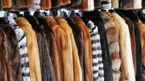 Fur coats. Shutterstock