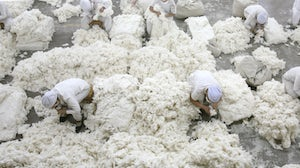 Workers remove by hand impurities such as leaves from cotton fibres in the Xinjiang Uyghur Autonomous Region city Turpan, China. Getty Images.