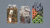 Cotton farm; Merino wool; spools of polyester thread. Collage by BoF.