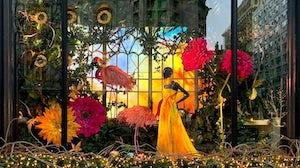 Ralph Lauren store window. Shutterstock.