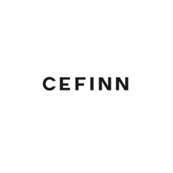 Cefinn company logo