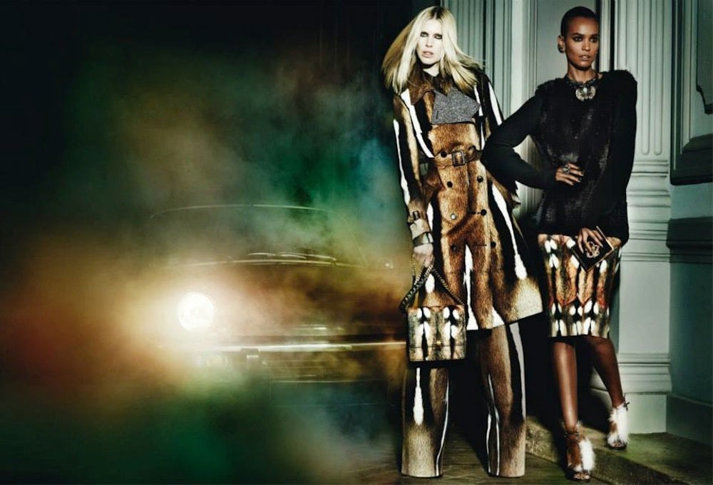 Roberto Cavalli's Autumn/Winter Campaign | Source: Roberto Cavalli