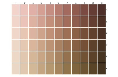 L'Oréal colour chart of skin tones | Source: L'Oréal