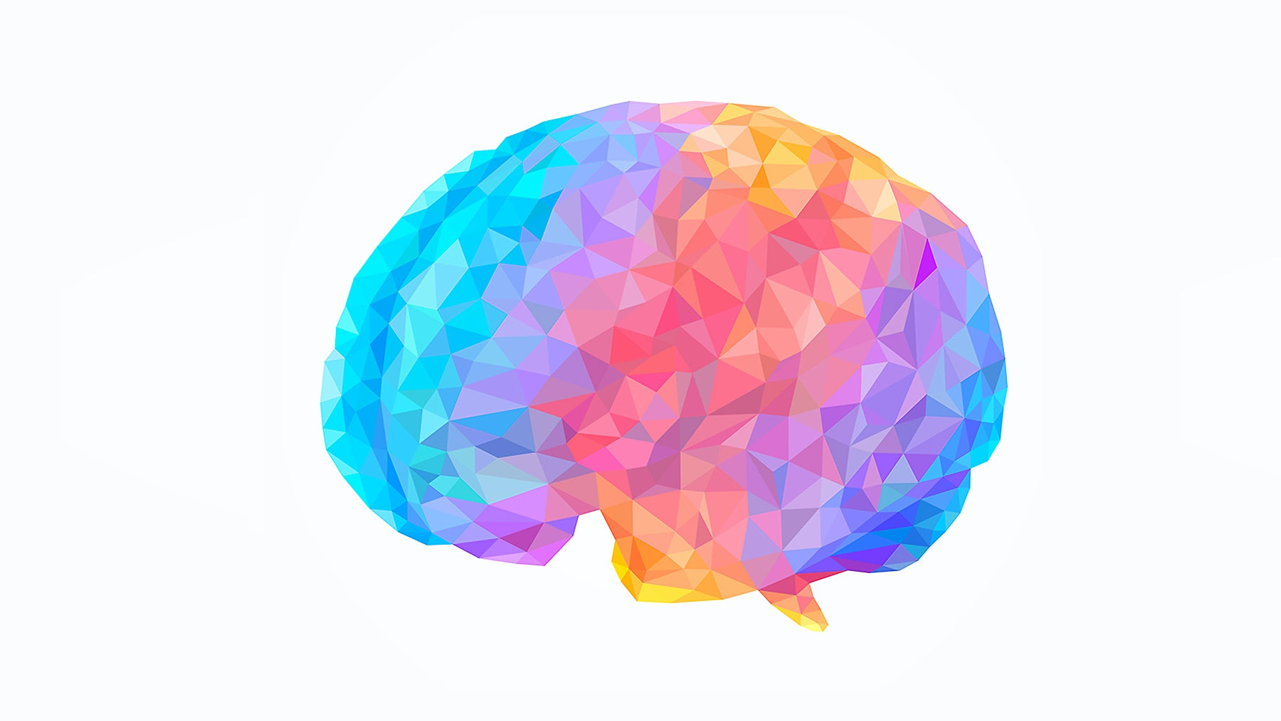 Impression of the human brain | Source: Shutterstock