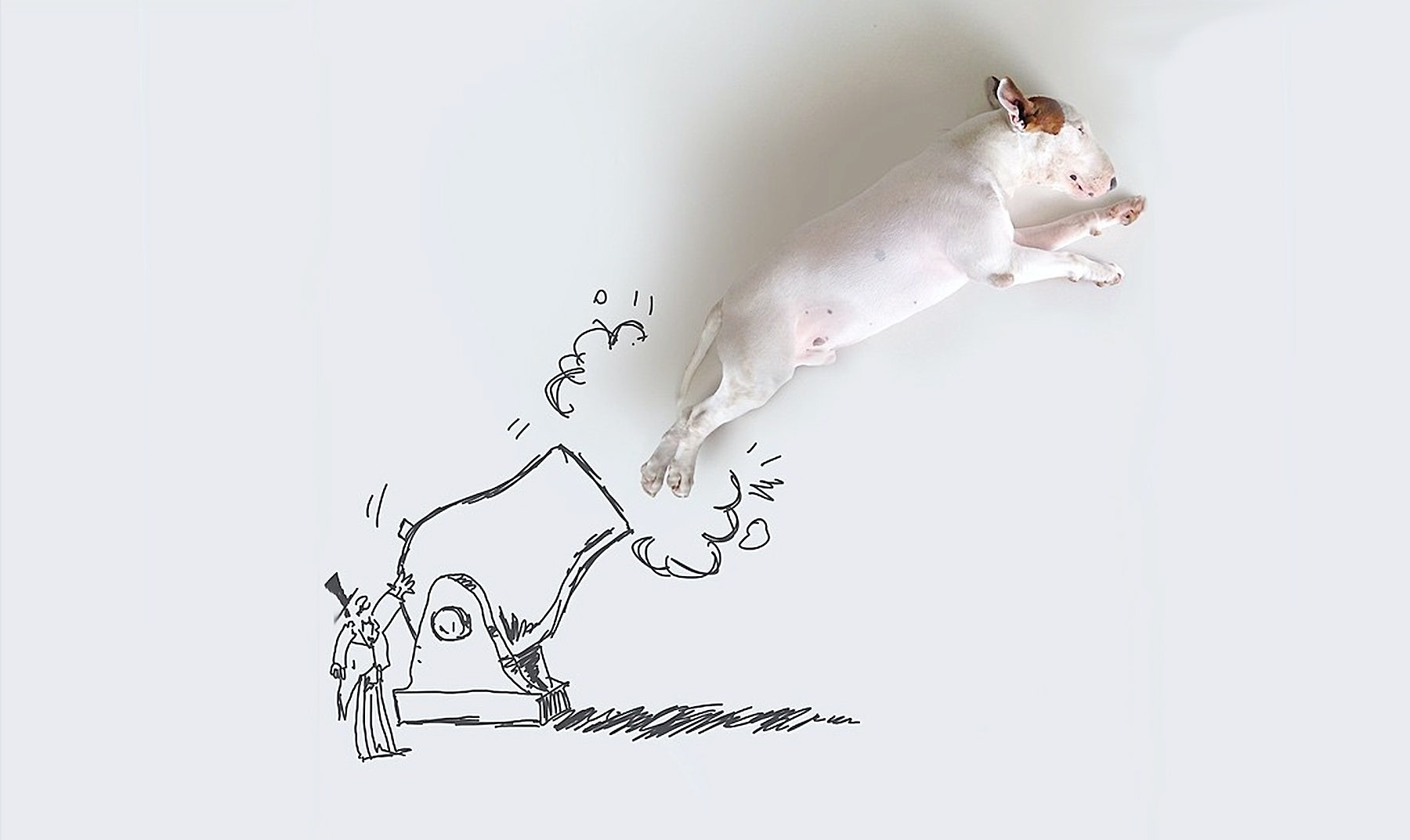 Rafael Mantesso illustration of Jimmy Choo the dog | Source: Rafael Mantesso