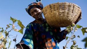 A Fair Trade Cotton Farmer | Source: Fair Trade