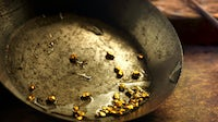 Gold on a wash pan | Source: Shutterstock