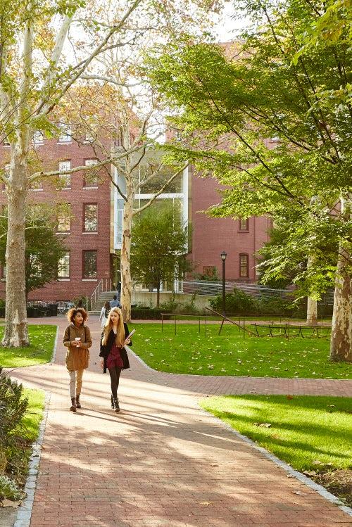 Pratt Institute campus | Photo: William Abranowicz