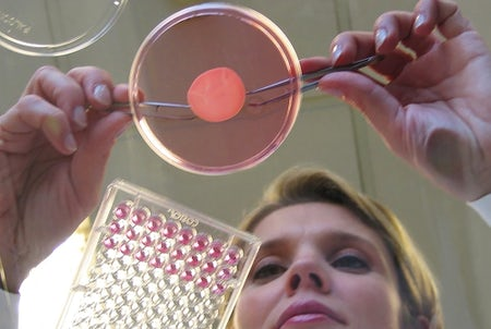 Testing using reconstructed human skin | Source: L'Oreal