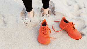 Allbirds' footwear | Source: Allbirds