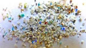 Microplastic | Source: Flickr/Oregon State University