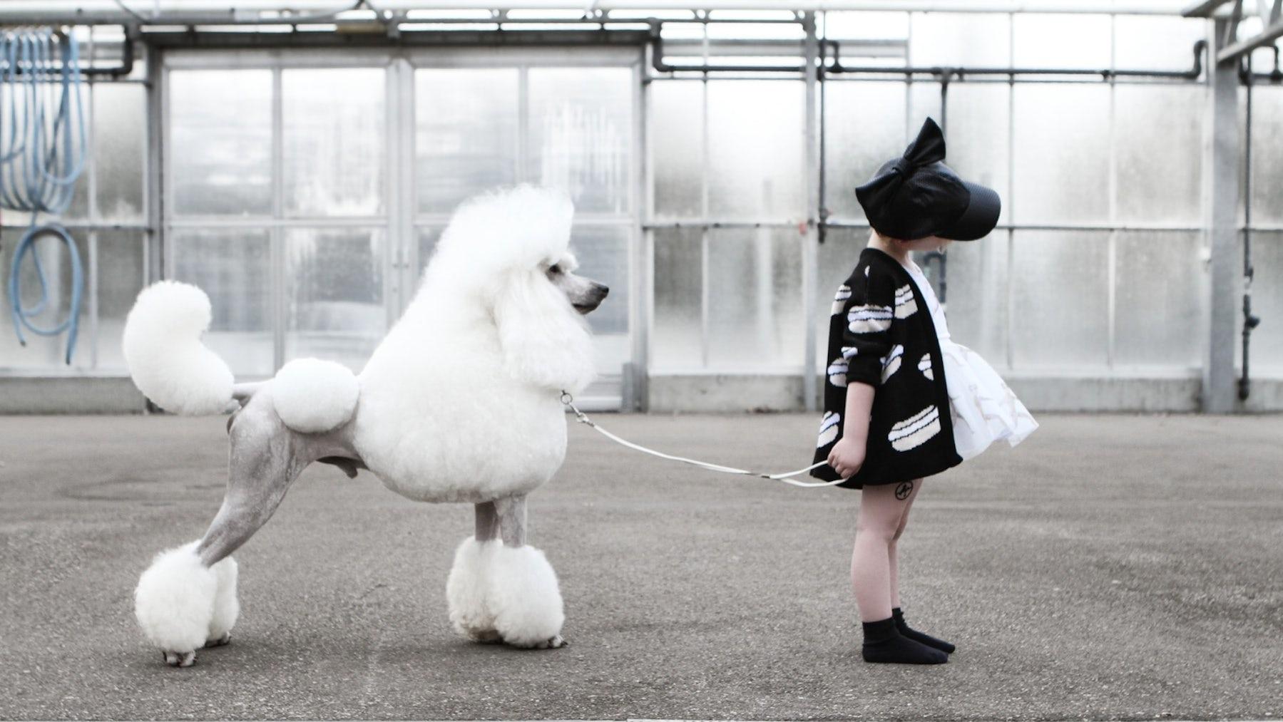 The 'Fashionisation' of Childrenswear