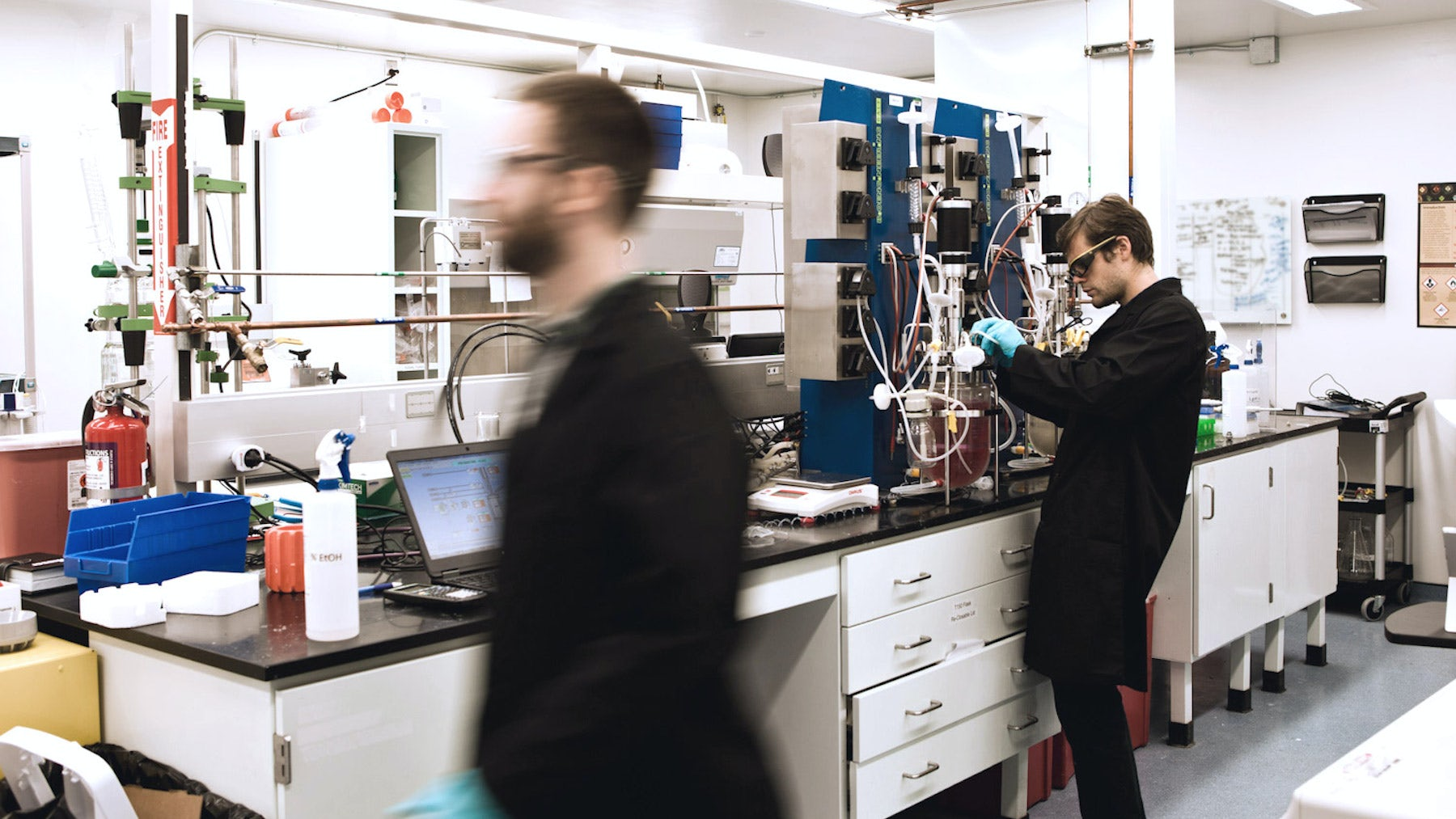 Inside Modern Meadow's cellular engineering lab | Source:  Courtesy