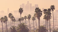 Los Angeles | Source: Shutterstock