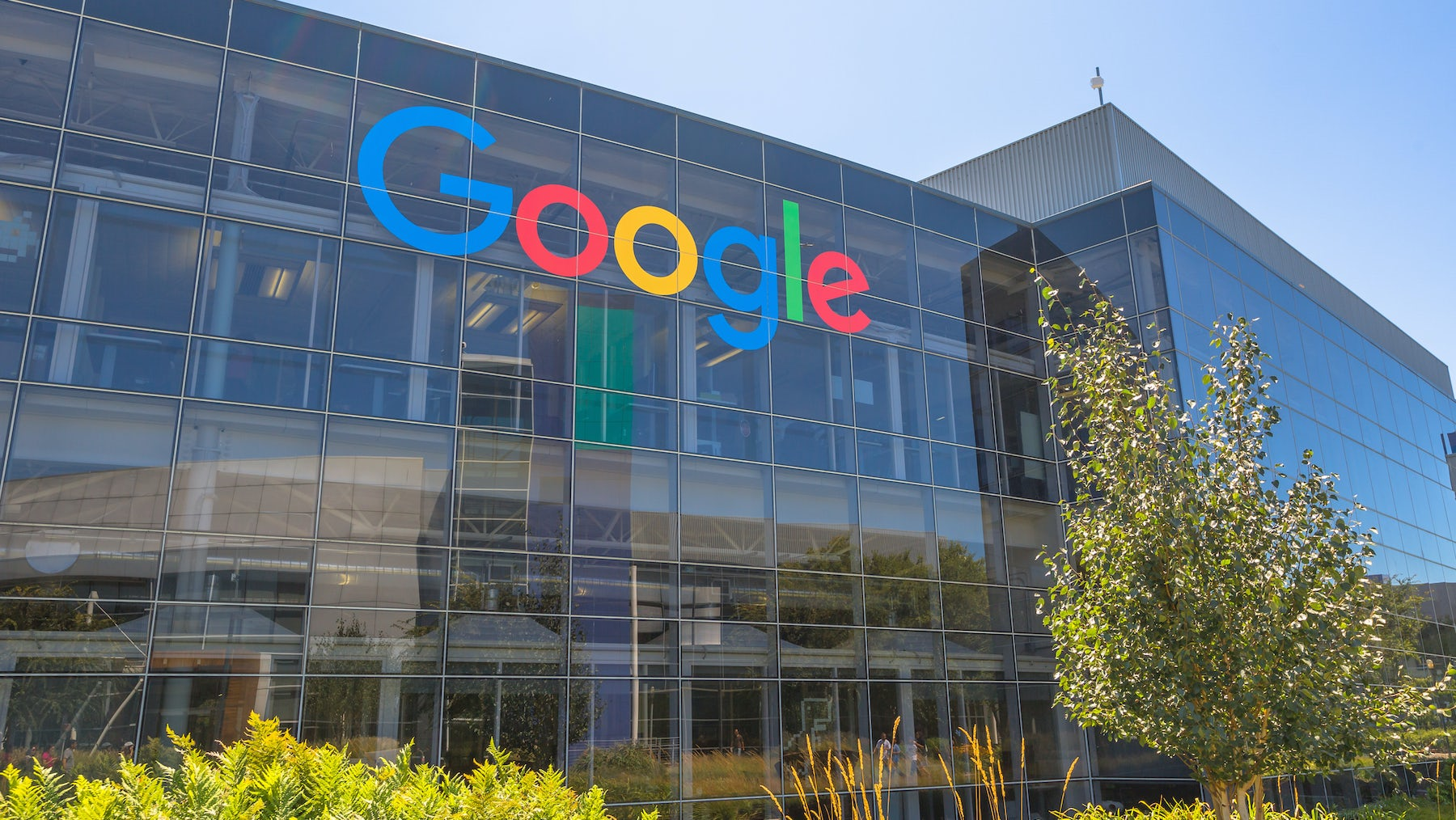 Google's offices in Mountain View, California | Source: Shutterstock