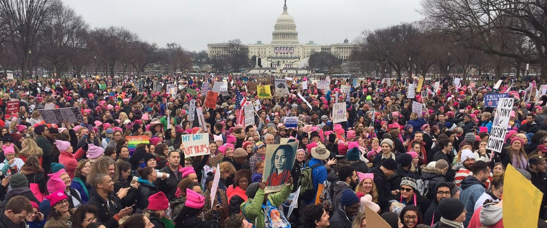 The Women's March on Washington, January 21, 2017 | Source: Flickr