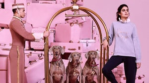 Ted Baker campaign | Source: Courtesy