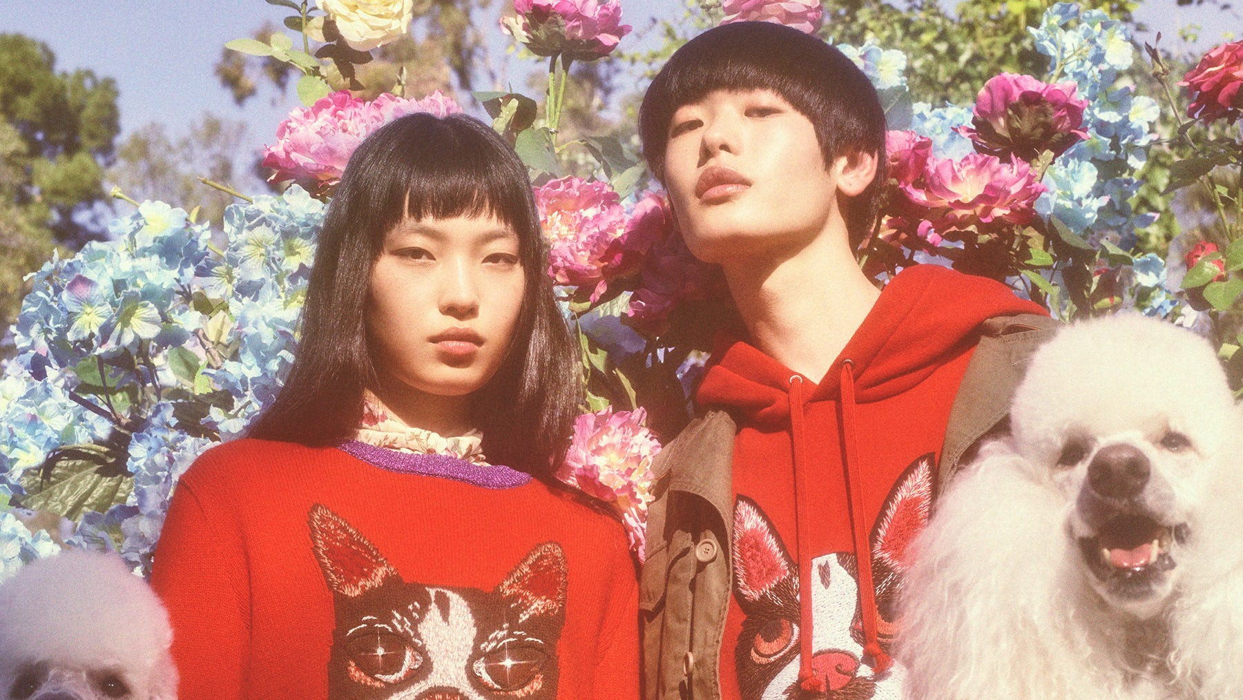 Gucci's capsule collection celebrating the Chinese New Year | Photo: Petra Collins for Gucci