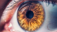 Macro shot of human eye | Source: Shutterstock