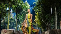 A model walks a forested runway for Dior | Source Peter White/Getty Images