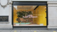 Storefront display for the launch of Selfridges' Project Earth initiative | Photo: Matt Writtle for Selfridges