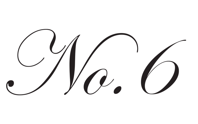 No.6 Store company logo