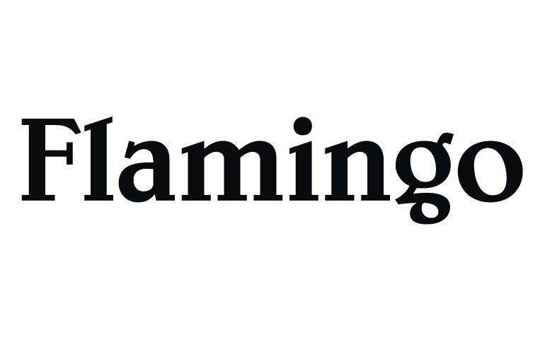 Flamingo Group company logo